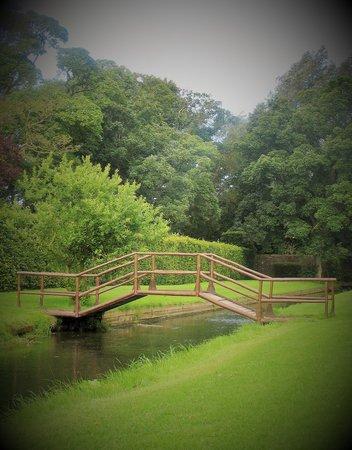 Headlam Hall Hotel Spa & Golf: The gardens