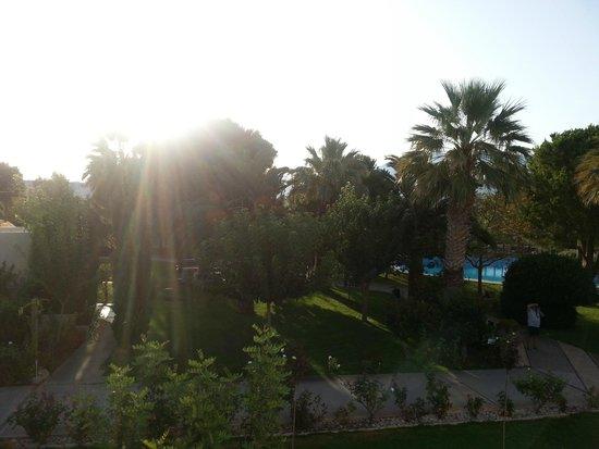 Cretan Malia Park : נוף מהמלון