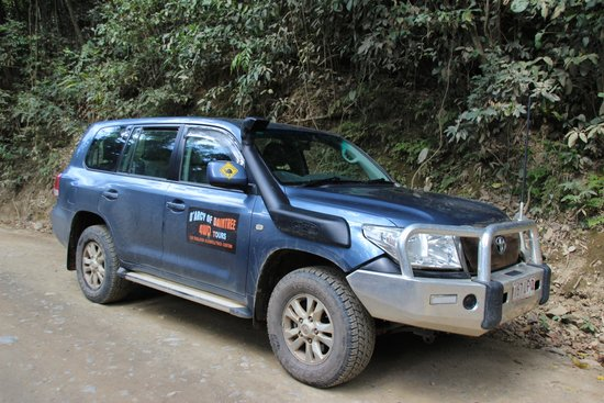 D'Arcy of Daintree 4WD Tours: The 4 x 4