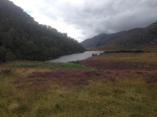 Glen Strathfarrar: beautiful view