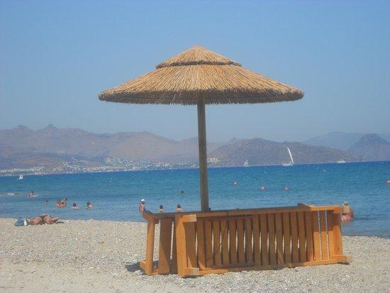 Hotel Atlantis: Beach.