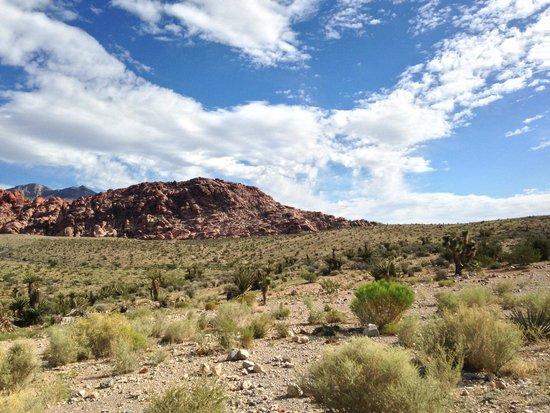 Wynn Las Vegas: Red Rock Canyon