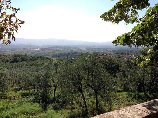 Relais Villa Belpoggio: Vistas desde la fuente de Villa Belpoggio