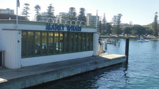 Manly Beach : Muelle