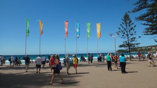 Manly Beach : Entrada