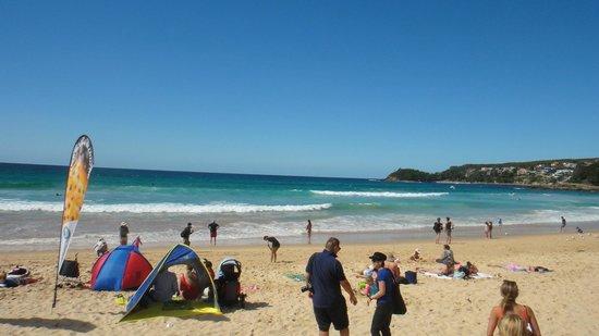 Manly Beach : Playa