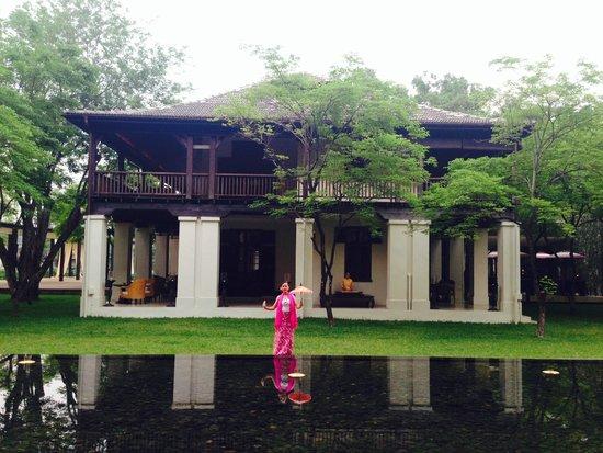 Anantara Chiang Mai Resort: โชว์ขิมและรำไทยช่วงเย็นหน้าล็อบบี้