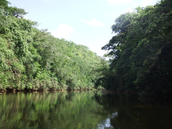 The Lodge at Chaa Creek: Canoeing Macal River