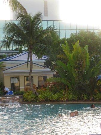 Melia Nassau Beach - All Inclusive: pool grounds were nicely groomed