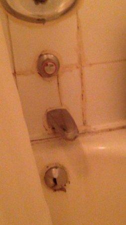 Berjaya Eden Park London Hotel : bath