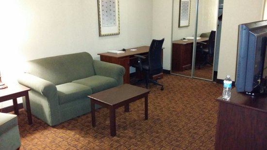 Hampton Inn Baltimore - Washington International Airport: Living area