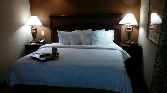 Hampton Inn Baltimore - Washington International Airport: Suite bedroom