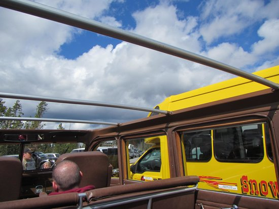 Historic Yellow Bus Tour: roof off view