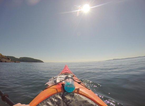 Anacortes Kayak Tours: Kayaking in the San Juans