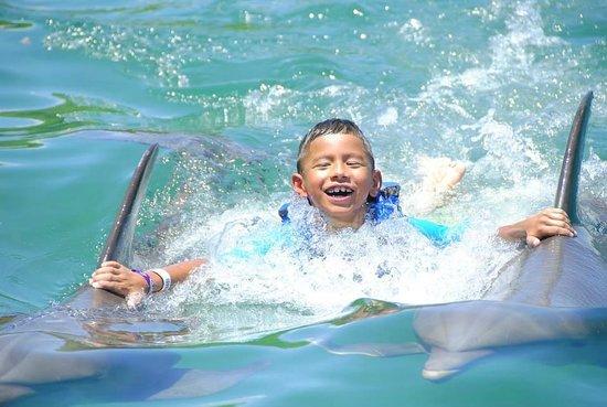 Parc Xel-Ha : dolphin ride
