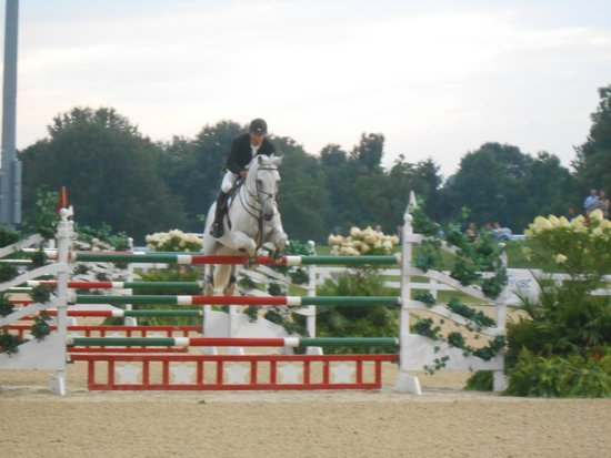 Open Jumping Competition at the Kentucky Horse Park