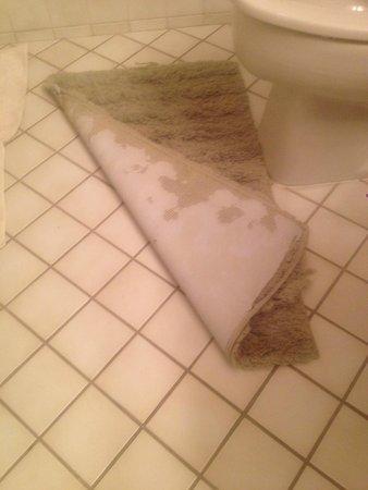 The Edgewater Inn: Worn Bathroom rug