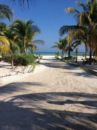 Hotel Villas Delfines: zona de camastro con vista a la playa