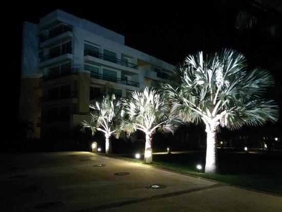 Occidental Grand Cartagena Resort : Jardin