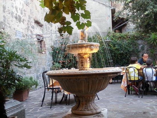 Trattoria da Picchietto : particolare del giardino