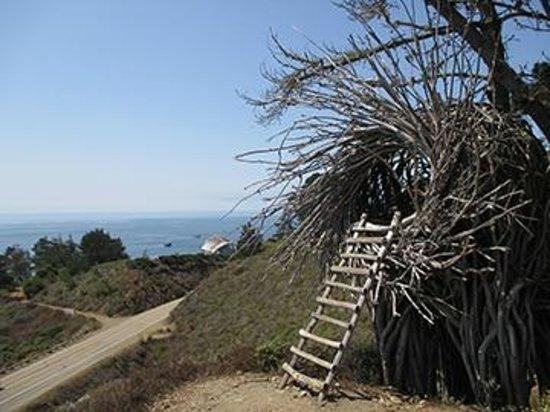 Treebones Resort: The Human Nest - private, unusual, fun