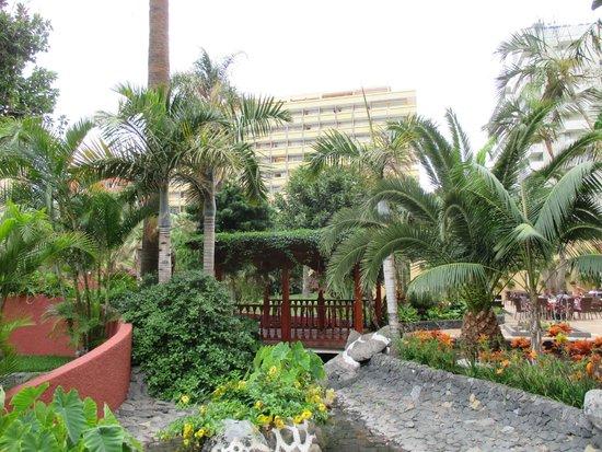Sunlight Bahia Principe San Felipe: L'aménagement florale autour de la piscine