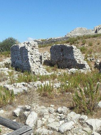 Tempio di Segesta (Tempio Influenza Greca): resti