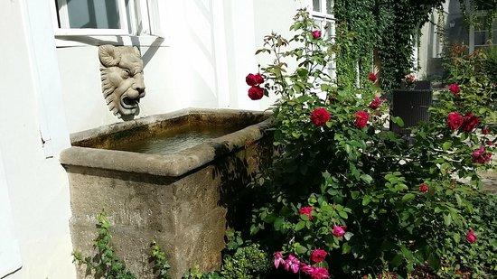 Smetana Hotel : Fountain in the back courtyard