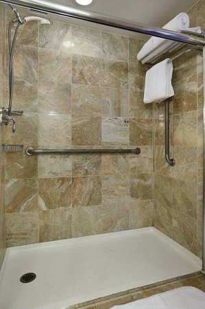 Hilton Short Hills: Roll in Shower
