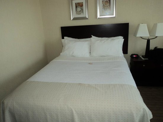 Holiday Inn Toronto Airport East: Room