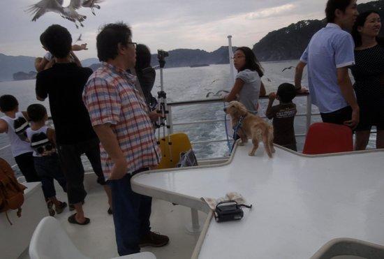 Miyako Jodogahama Boat Cruise : 遊覧船の屋上