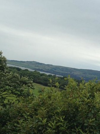 Cream O' Galloway : view from the viewing tower