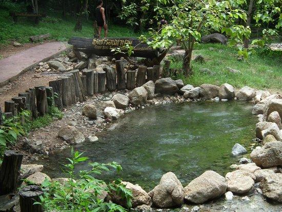 Pai Hot Springs: pool