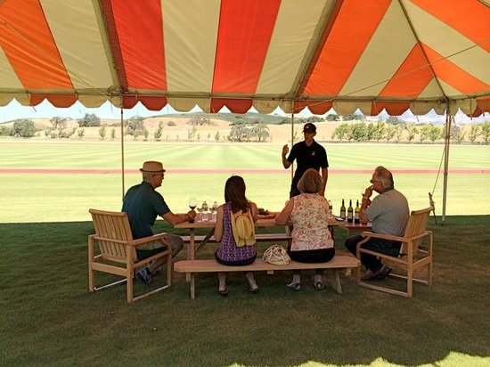 Sustainable Vine Wine Tours: Piocho Vineyards - Private Tasting by the Polo Fields
