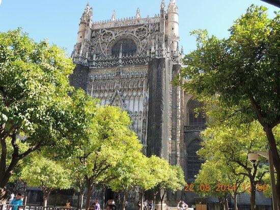 Catedral de Sevilla: 3