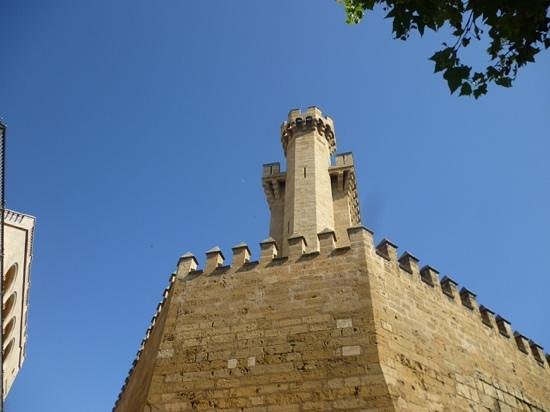 Catedral de Mallorca: panoramica