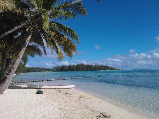 Hotel Les Tipaniers: Beach view