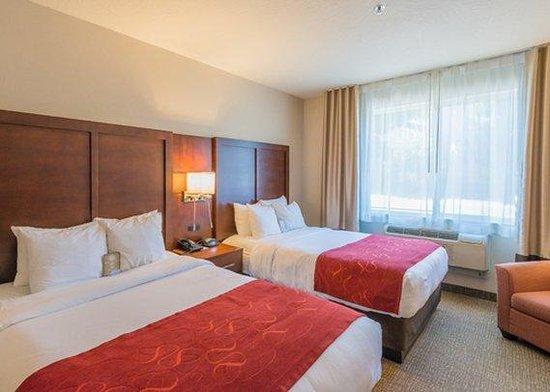 Comfort Suites: Queen Queen Suite