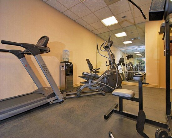 24-hour fitness center essay 66 reviews of 24 hour fitness - mockingbird your run of the mill budget gym don't expect to be blown away, but they keep it clean and this location is rarely overcrowded.