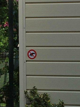 Jordaan : Prohibido