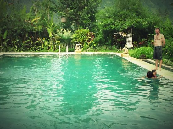 Subak Tabola Villa : the pool