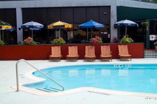 Holiday Inn Washington DC / Greenbelt : Swimming Pool