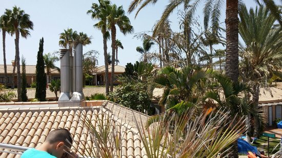 Hotel Dunas Suites and Villas Resort: Jardines