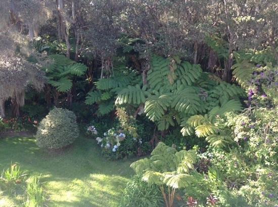 My Island Inn: The Lovely Garden