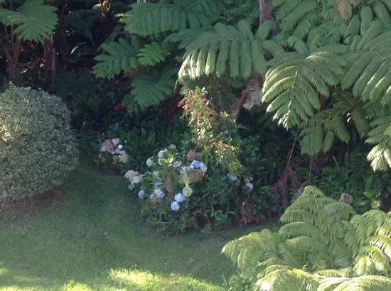 My Island Inn: The Lovely Gardens #2