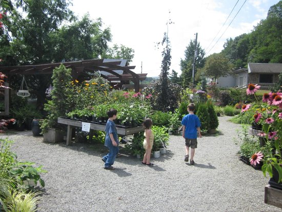 Tunkhannock, PA: Children investigating the gardens