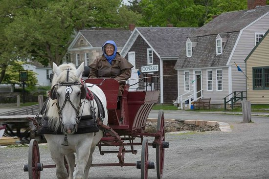 Mystic Seaport: Horse and Wagon