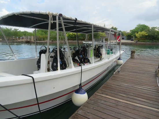 Barefoot Cay: Dive boat being prepared for the day