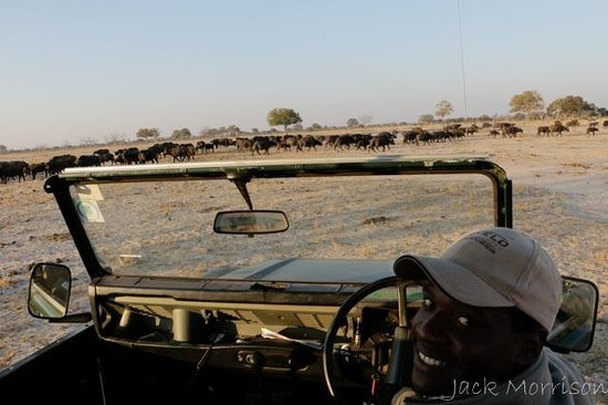 Bomani Tented Lodge: Our wonderful Guide