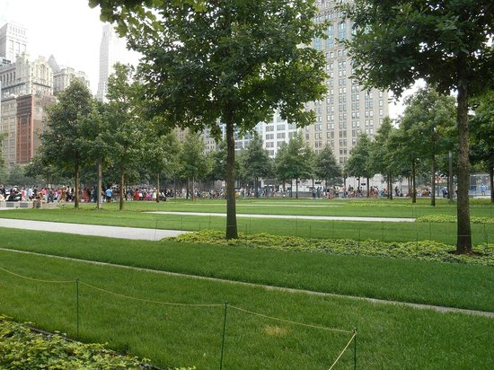 National September 11 Memorial und Museum: Un poco de verde en el parque